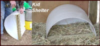 Kid Shelter - Click Here to view a larger image